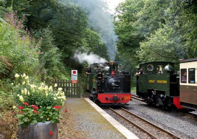 Rheidol Railway - Mid-Wales Steam Railway - Images by John R Jones (1)