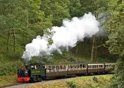 Rheidol Railway - Mid-Wales Steam Railway - Images by John R Jones (10)