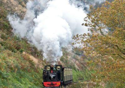 Rheidol Railway - Mid-Wales Steam Railway - Images by John R Jones (14)