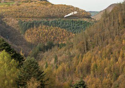 Rheilffordd Rheidol - Rheilffordd Ager Canolbarth Cymru - Delweddau gan John R Jones (16)