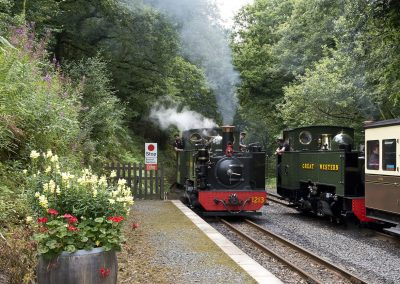 Vale of Rheidol Railway Images (2)