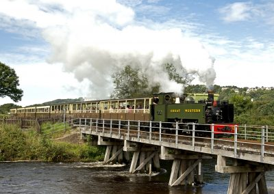 Vale of Rheidol Railway Images (4)
