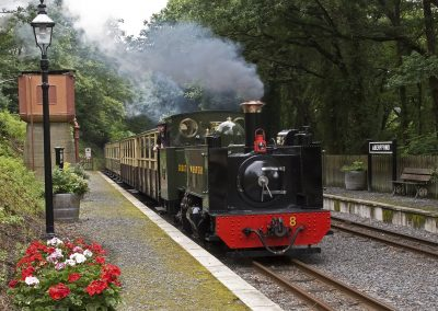 Vale of Rheidol Railway Images (7)