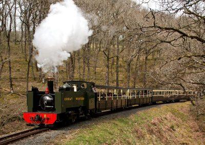 Rheidol Railway Aberystwyth (2) (Copy)